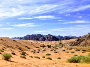 Saudi Desert - rabah-al-shammary